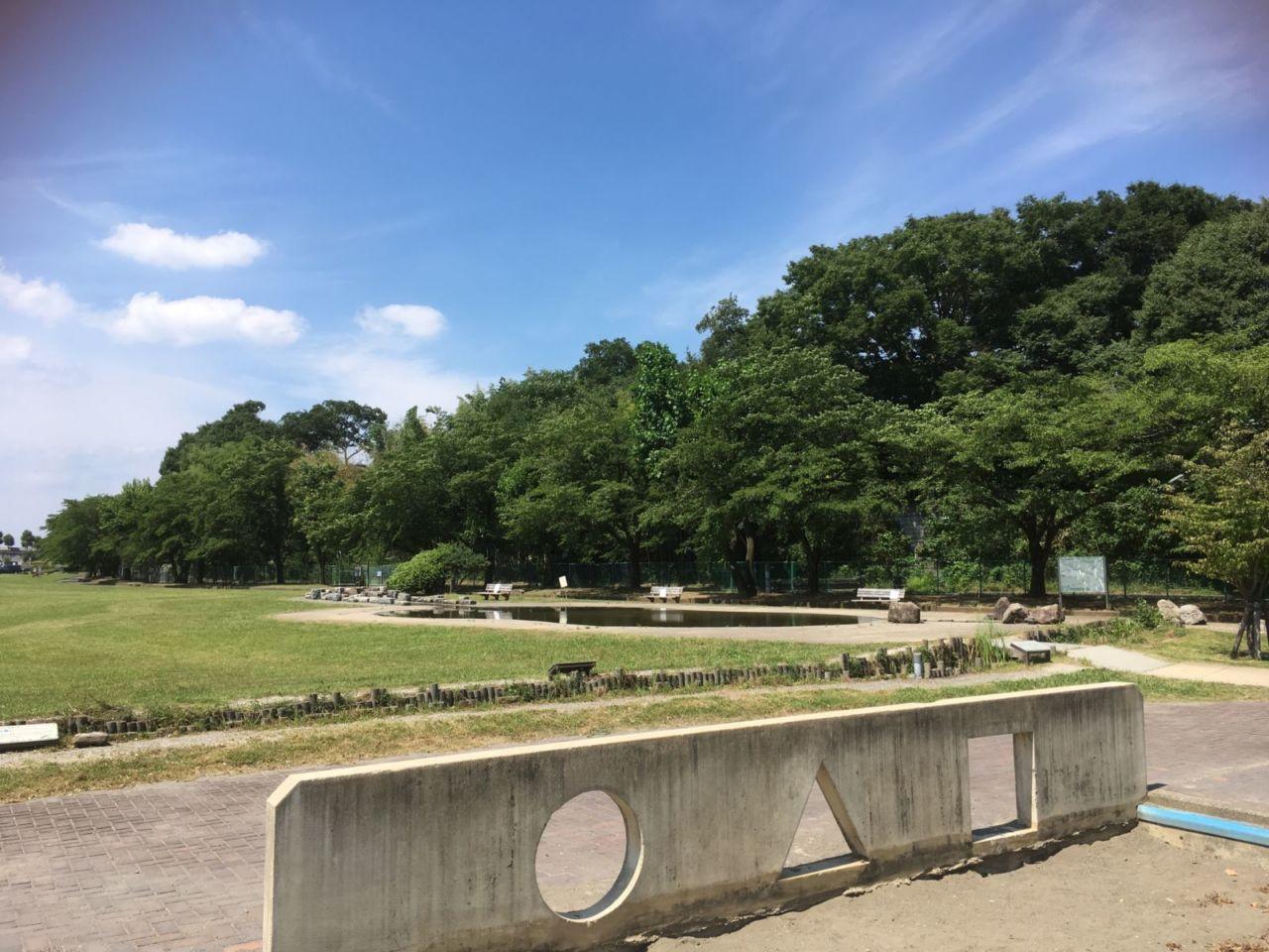多摩川緑地福生南公園はBBQ場が無料!じゃぶじゃぶ池も楽しい ...