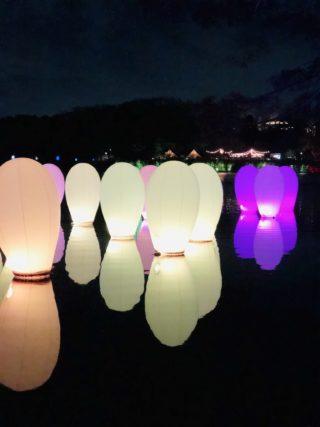 3/3(日)まで!話題のメッツァで「チームラボ 森と湖の光の祭」