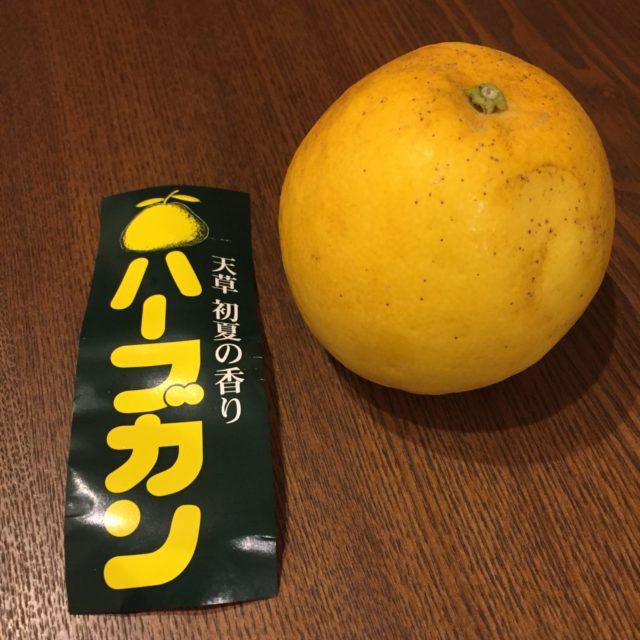 オレンジ ジュース つわり