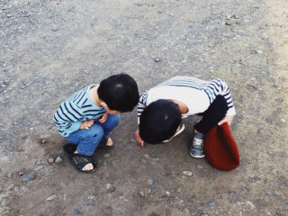 衝撃のダンゴムシバラバラ事件!2歳児に生命の大切さを伝える難しさに直面