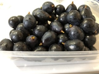 ブドウを長持ちさせる保存方法はあの部分を切るだけ!冷凍&お弁当も◎