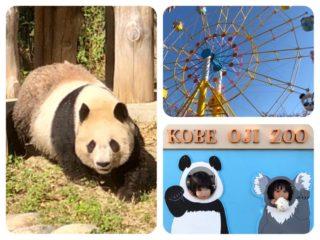日本でココだけ【神戸市立王子動物園】 パンダとコアラに会える