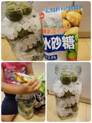 瓶で簡単!梅仕事の季節です。親子で楽しむ梅シロップ作り