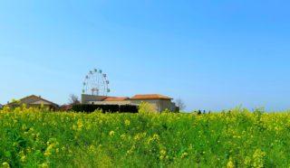 「ソレイユの丘」で大自然を満喫!1日中遊べて子どもも大人も大満足