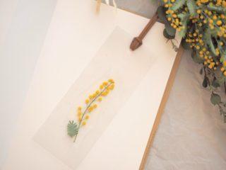 3月8日は「ミモザの日」簡単3ステップ!ミモザ押し花しおりの作り方