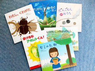 わが子が虫好きになったきっかけは絵本!夏に読みたい昆虫、虫の絵本